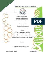 Reporte_final_de_microbiologia_general.pdf