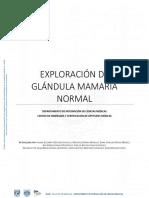 1.Exploracion de Glandula Mamaria Normal