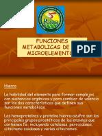Micronutrientes en Hortalizas