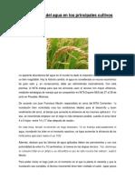 Importancia Del Agua en Los Principales Cultivos (1) Elmer