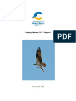 Osprey Nation 2017 Report 2.16.Docx