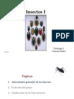 Clase_Insectos_1.pdf
