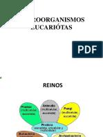 MICOLOGÍA Biología de Los Microorganismos (2)