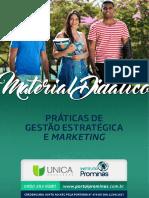 PRÁTICAS DE  GESTÃO ESTRATÉGICA  E MARKETING
