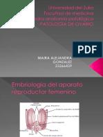 Patologia de Ovario