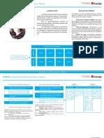 Ficha_Instrumento_Observacion_Directa-Rubricas.pdf