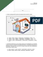Evaluación DTH AVF