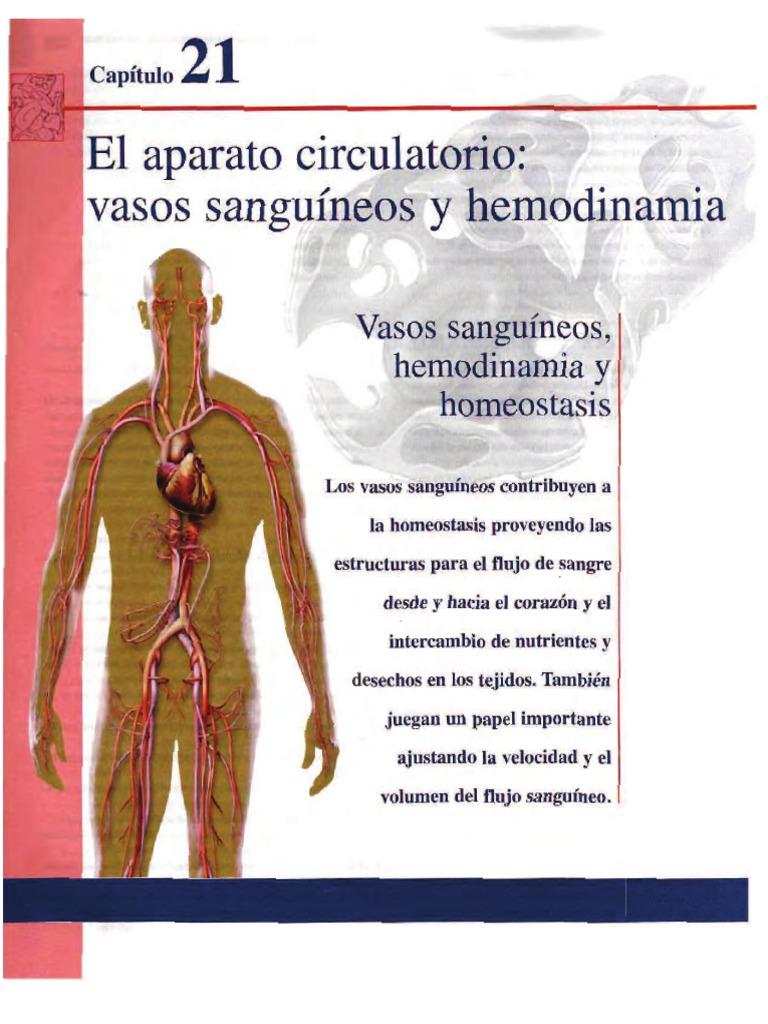 Excelente Become Anatomía Y Fisiología Capítulo 4 Motivo - Imágenes ...