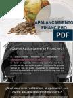 APALANCAMIENTO-FINANCIERO