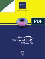 Calculo%20Diferencial%20em%20R-17.pdf