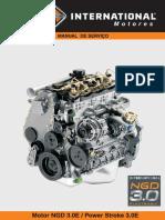 Manual de Oficina Ngd 3.0 l