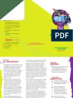 Plegable - Encuentro Nacional Territorios Urbanos Por La Paz