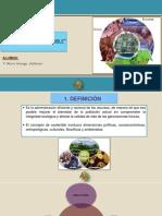 Trabajo 6 Desarrollo Sostenible