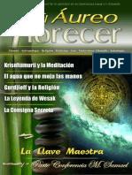 revista_31.pdf