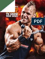 Best Mass Triceps