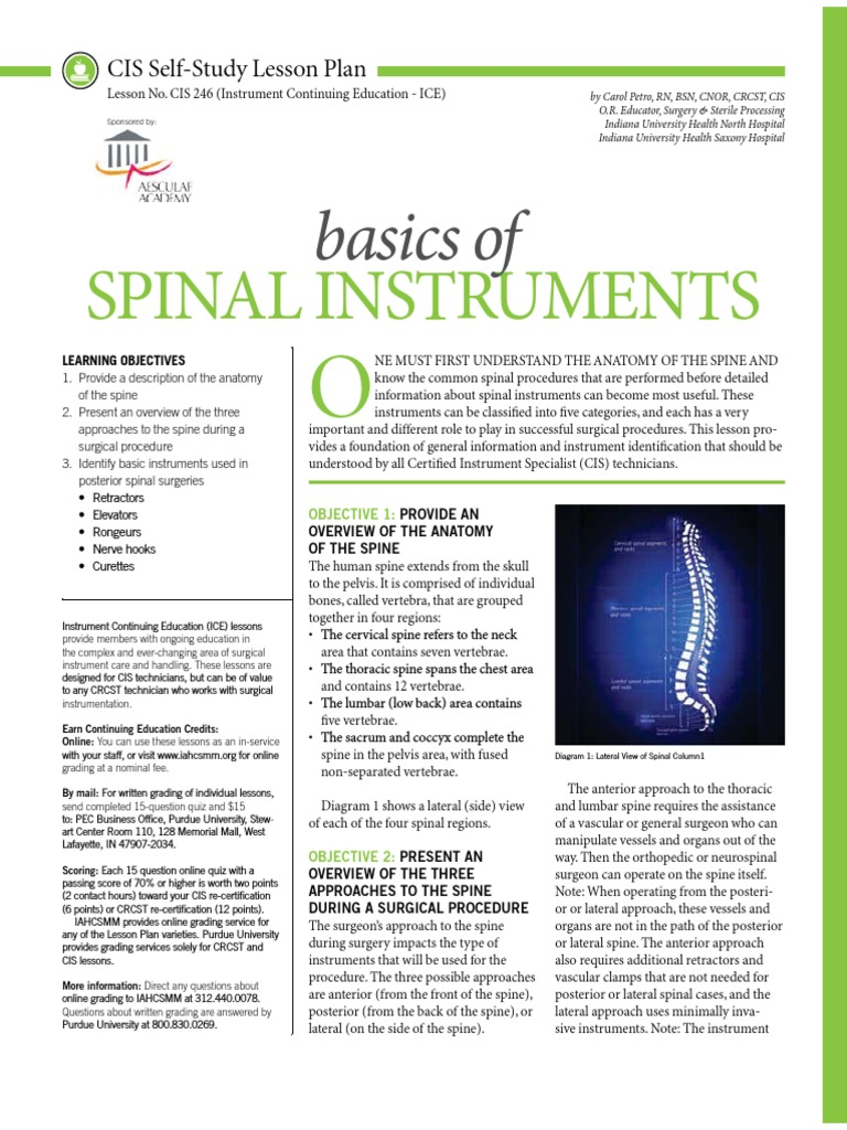 Spinal basics vertebral column spinal cord 1betcityfo Choice Image