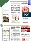 163552385-Triptico-de-CA-Cu.pdf