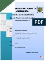 INFORME  SALIDA.docx