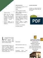 TRÍPTICO-ESTRADA-20-NOV -2014-OK.doc