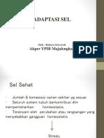Adaptasi Sel YPIB