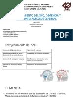 Equipo 11..Fisiologia Del Envejecimiento, Demencia y AAC.