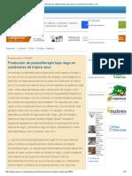 Producción de Pastos_forrajes Bajo Riego en Condiciones de Trópico Seco