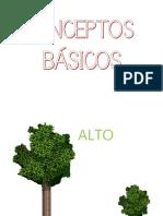 APRENDEMOS-LOS-CONCEPTOS-BÁSICOS-CONTRARIOS