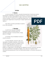 les-carottes.pdf