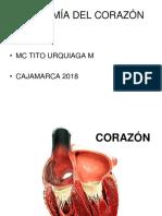 Corazon Tum 2018