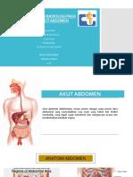 Gambaran Radiologi Akut Abdomen (dr. Pherena Amalia, Sp.Rad)