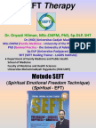 241073 Block 21 SEFT Therapy Dr.oryzati 28Nov2017