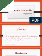 3. El Síntoma en La Terapia Familiar