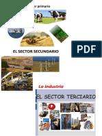 Imagenes de Los 3 Sectores Economicos