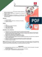 Guía Laboratorio Fundicion.doc