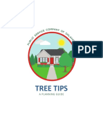 Tree Tips - Public Services of Oklahoma (AEP)