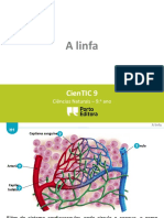 h1-a-linfa1.pptx