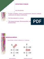 Aula 3 - Carboidratos Estrutura e Função