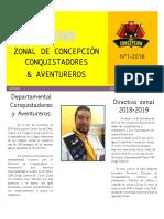 Boletin Zonal 01 2018 3