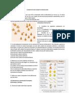 Examen Noveno Genetica Mendeliana