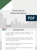 Presentacion Melon AICE 2017