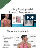 aparato_respiratorio psicosomatica