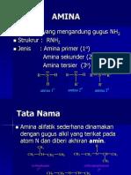 amina 2