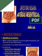 Anato - 16 Int Delgado