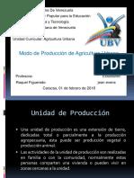Agricultura Urbana Jesselys.pptx