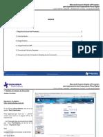 Manual de Usuario Dirigido Al Proveedor Para La Generacipon Del Cfd (Vobo 31 Marzo 2010)