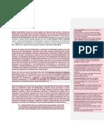 Pibid- Fundamentação Teorica R.P.