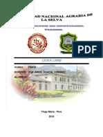 Informe 2 - Caída Libre