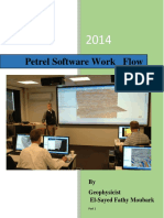 Petrel Software Work Flow part 1.pdf