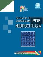 neuro inases.pdf