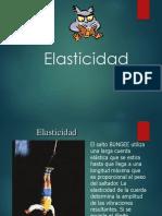 Elasticidad-Fisica-II (1)